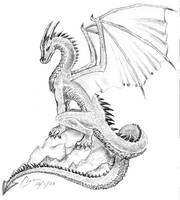 Dragon by Ciarra