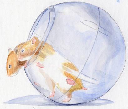 Hamsters by laserboyjc