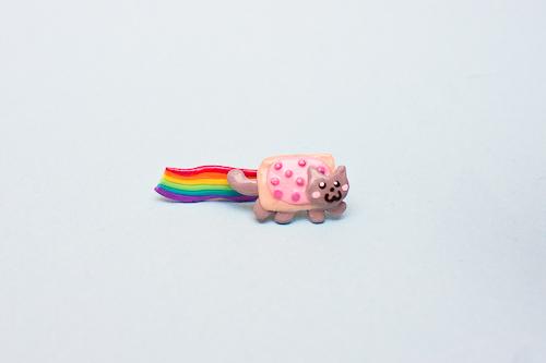 Nyan Cat Earrings by theaquallama