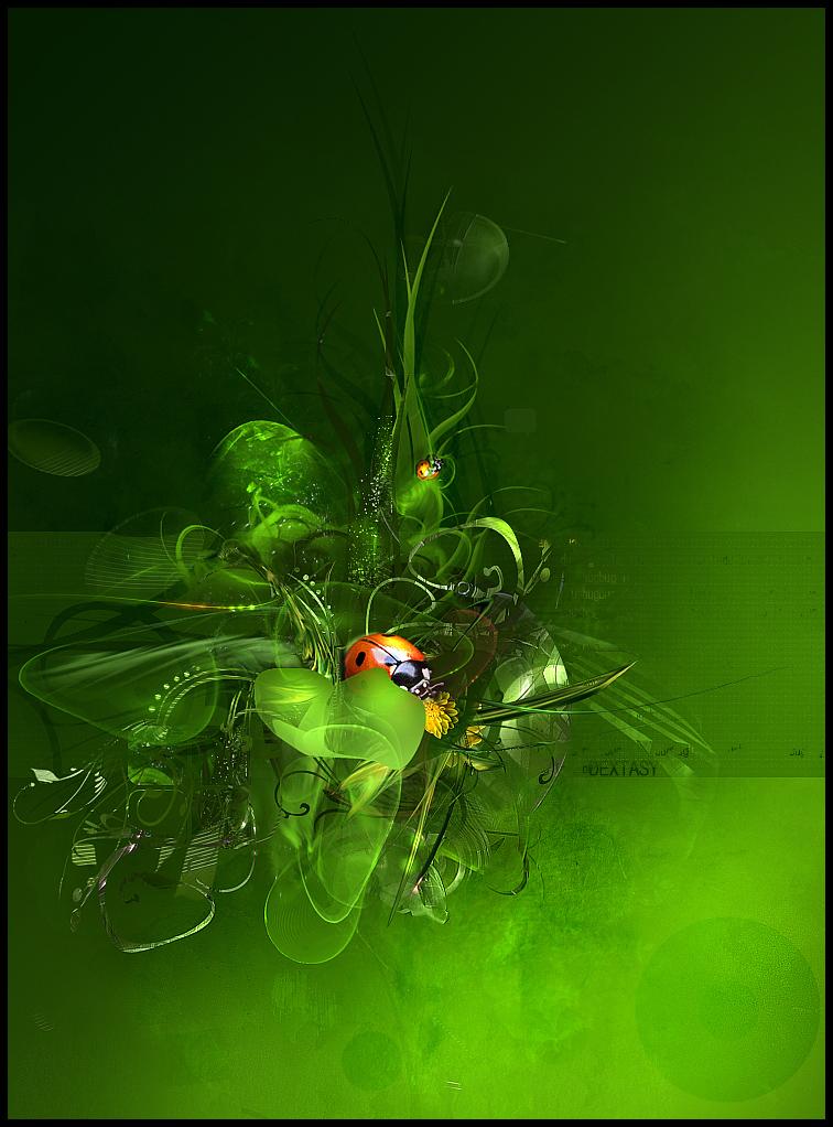 ladybug digital art