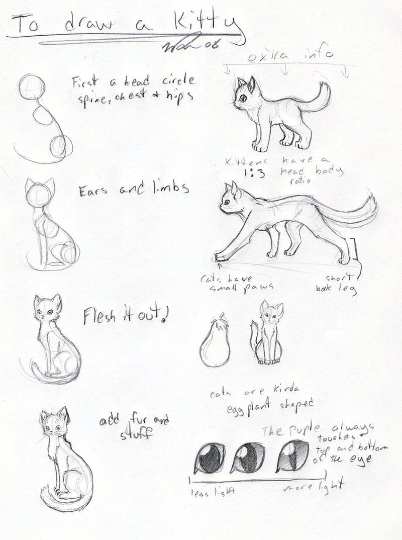 Cat Tutorial -OLD- By FrostDragonVacu On DeviantArt