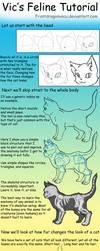 Feline Tutorial by FrostDragonVacu