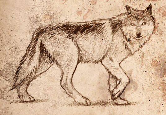 Wolf of Erewhon by CaligariMarte