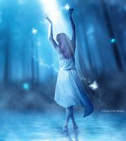 Follow your dream. by CaoChiNhan