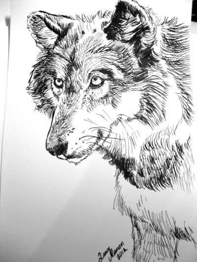 Faith the wolf by 88Laura88