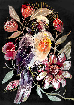 Turtledove and Passion flower