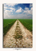 Path to nowhere by grugster
