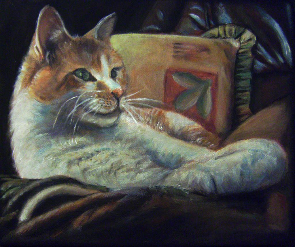 Flossie the housecat