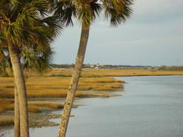 A photo in Florida