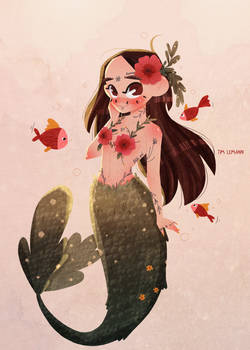 Mermay challenge illustration