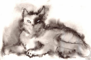 Feline by Phylogynist