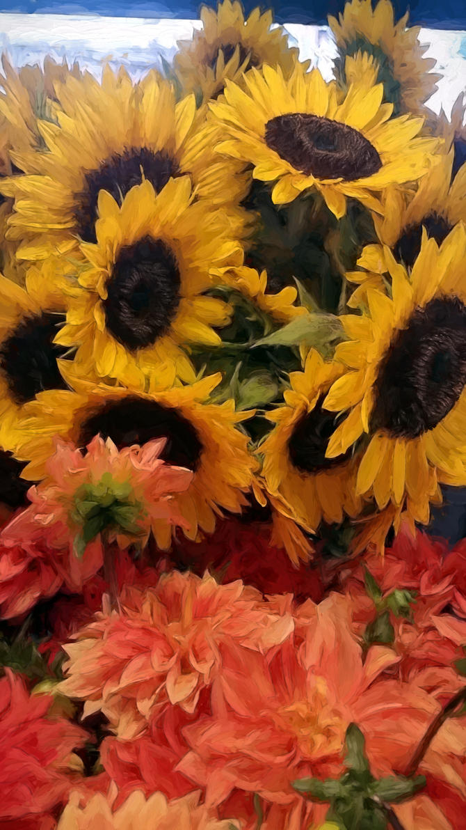 Flowers Seattle by Rockport45