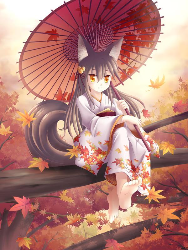 Akiko, the fox of autumn