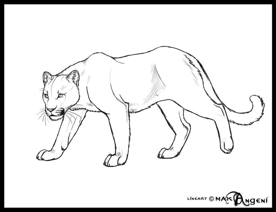 Free lineart-Feline