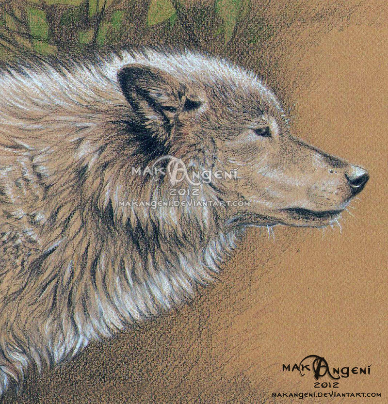 Wolf head by makangeni