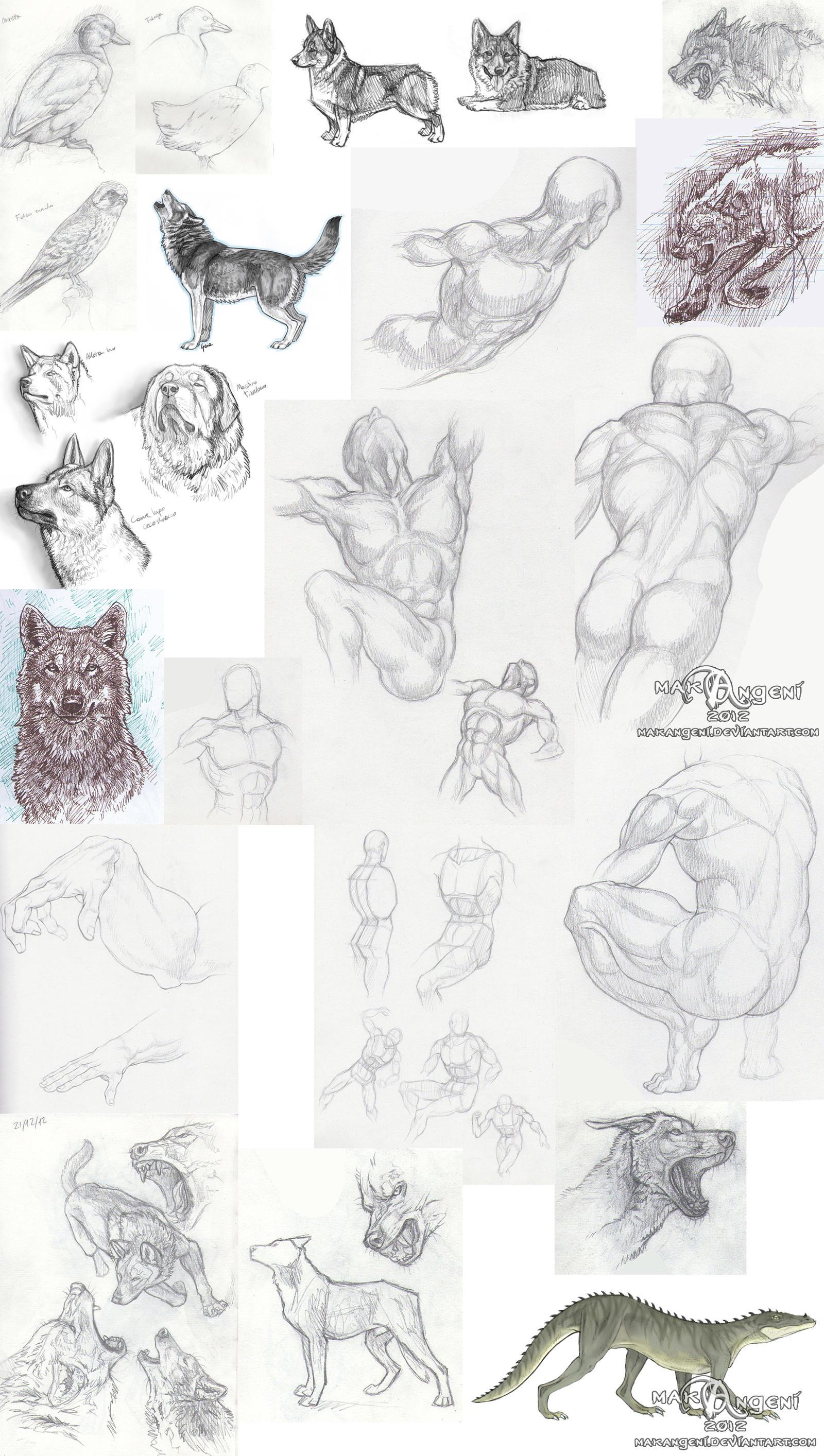 Sketch dump by makangeni