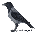 Hooded crow pixel by makangeni