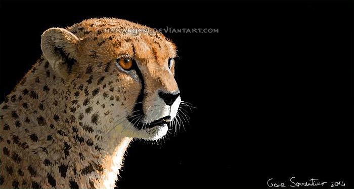 Cheetah on black by makangeni