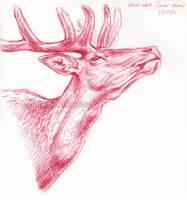 Red Deer head sketch by makangeni