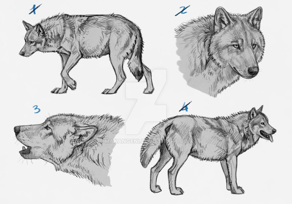 Wolf Premades/YCH for SALE - 1 left by makangeni on DeviantArt