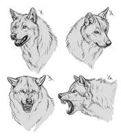 YCH Wolves - SOLD by makangeni