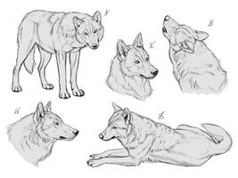 YCH Wolves 8 - SOLD by makangeni