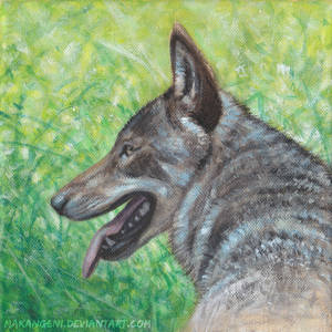 Wolf acrylic