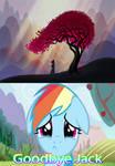 Rainbow Dash Reactions on Samurai Jack Finale