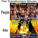 Everybody Hate Bay's Transformers ,But Not Me