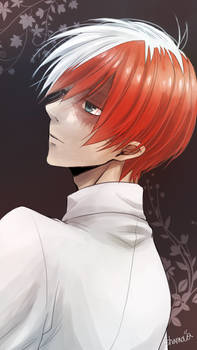 My Hero Academia Todoroki Shoto