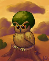 Afro Owl
