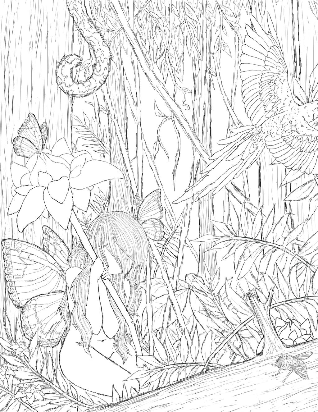 rainforest line drawing images reverse search