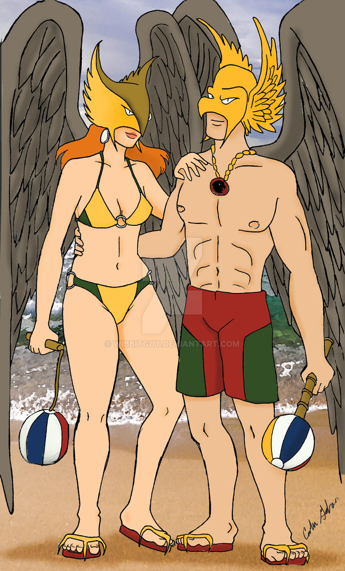 Hawkman and Hawkgirl at the Beach by WibbitGuy