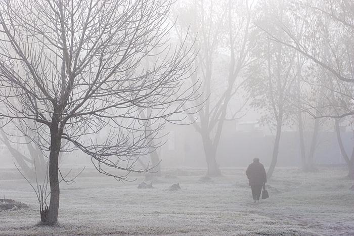 mistmist by KseniaMaytama
