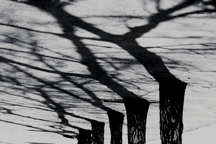 nobodies03 by KseniaMaytama