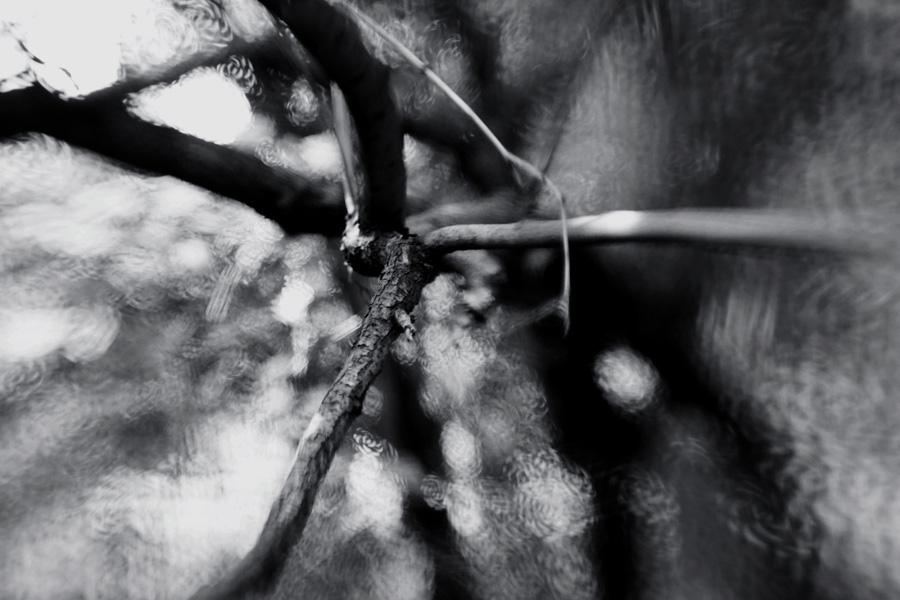 7234 by KseniaMaytama