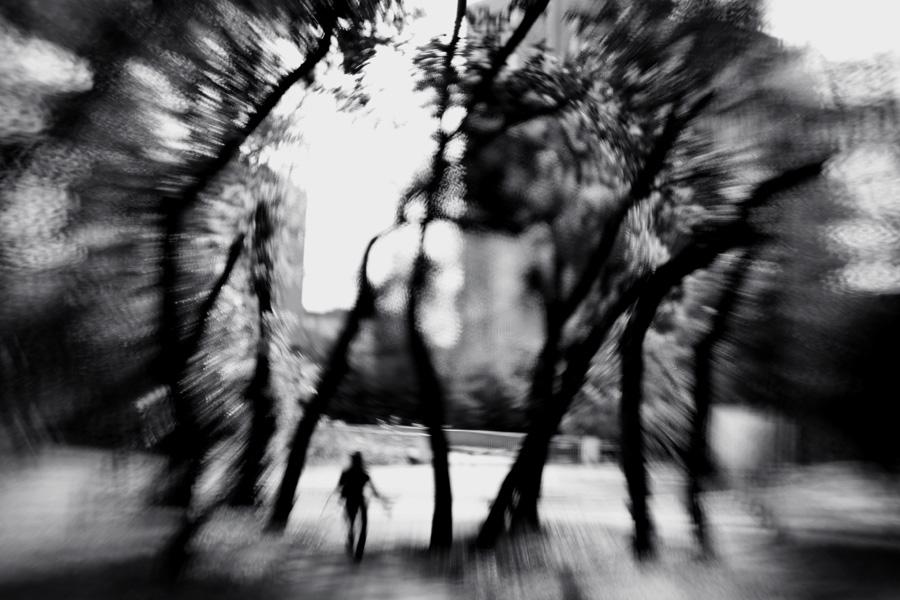 blind trees by KseniaMaytama