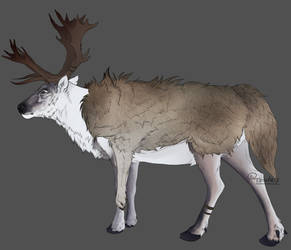 'The Huntsman' Caribou Design by Tzvii