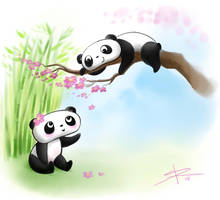 Panda fun by Sabinerich