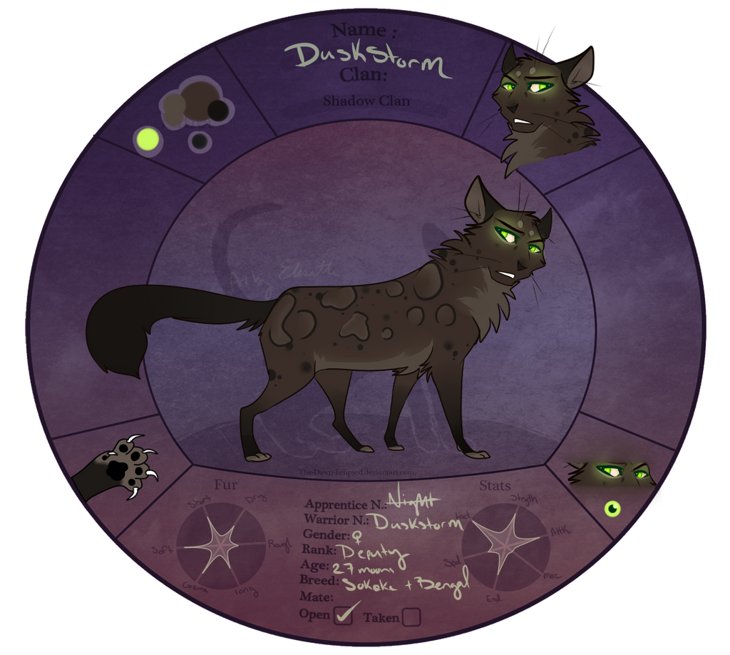 TDE | Duskstorm | Deputy of ShadowClan. by Acerbiic