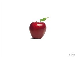 Vector Apple by AryaInk