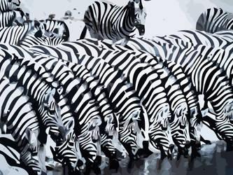 Vector Zebras by AryaInk
