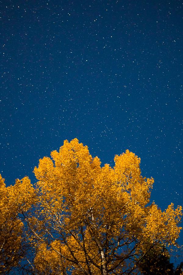 Autumn night sky by juhku