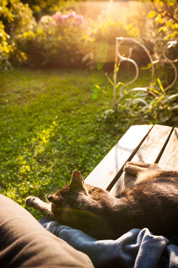 Relax by juhku