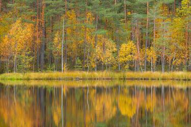 Autumn reflection by JuhaniViitanen