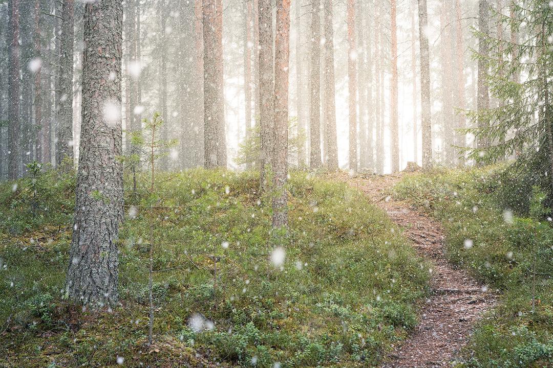 Snowing by JuhaniViitanen