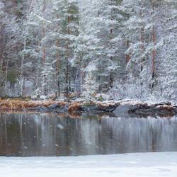 Snowing at the lake