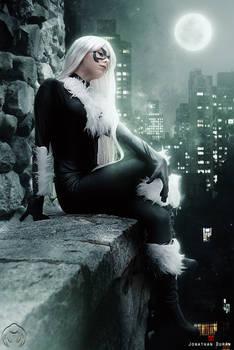 Black Cat - Long night