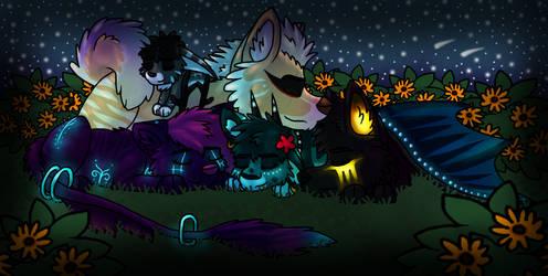 Under the Starlight by Kikiorylandia