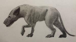 Hyaenodon 1